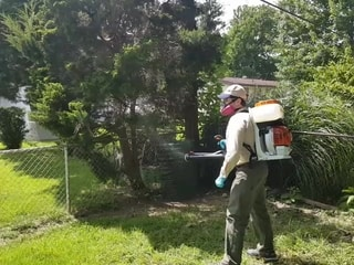 CloverWall Mosquito Control Treatment