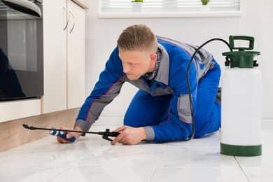 Pest Control Technician Inspection