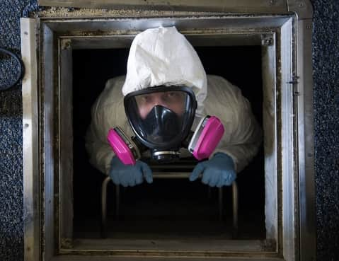 Pest Control Coronavirus
